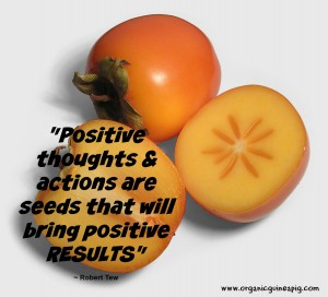 persimmon quote